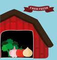 farm fresh vegetables natural health vector image vector image