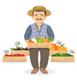 farmer with wooden boxes of fresh vegetables for vector image vector image