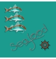 Fish nautical accessory and word Seafood vector image vector image
