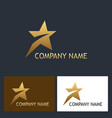 golden star speed company logo vector image