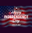 happy independence day greeting card usa vector image