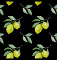 lemon branch seamless pattern on black vector image vector image