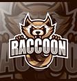 racoon mascot logo esport vector image vector image