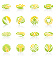 wheat and rye logo template set elements for desig vector image