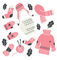 winter knitted clothes and knitting tools isolated vector image