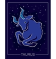 Zodiac sign Taurus on night starry sky background vector image vector image