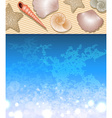 Beach with Seashells vector image vector image
