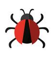 bug or beatle icon image vector image