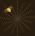 Cobweb of gold and spider vector image vector image