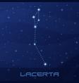 constellation lacerta lizard night star sky vector image vector image