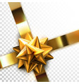 glossy golden bow vector image