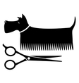 isolated grooming dog vector image