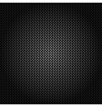 Metallic background with carbon texture vector image vector image