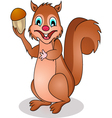 squirrel cartoon vector image