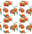 tangerine branches seamless pattern vector image vector image