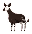 cartoon smiling okapi vector image vector image