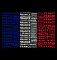 france flag mosaic of france texts vector image vector image