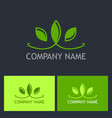 green leaf beauty nature logo vector image vector image