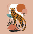 modern poster design with wild cat or leopard vector image