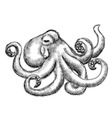 octopus black and white vector image vector image