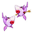 shark fell in love isolated on white background vector image