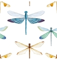 Watercolor dragonflies pattern vector image