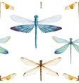 watercolor dragonflies pattern vector image