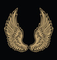 wings bird feather angel black white tattoo vect vector image
