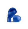 boxing blue gloves isolated on white background vector image vector image