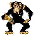 cartoon drunk chimp vector image vector image