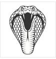 Cobra head - black and white vector image