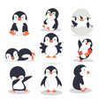 cute little penguin different poses set vector image vector image
