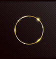 gold glitter circle frame with light effect vector image vector image