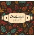 hand drawn background with autumn stuff vector image