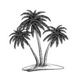 hand drawn sketch of palm trees in black isolated vector image