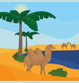 oasis on desert vector image