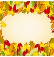 autumn colorful leaves Fall background vector image vector image