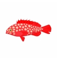 Hemichromis fish icon cartoon style vector image vector image