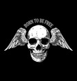 born to be free hand drawn winged skull on dark vector image