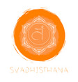 chakra svadhishana vector image vector image
