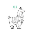 cute cartoon llama vector image vector image