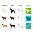 dog breeds cartoonblackoutlineflat icons in set vector image vector image