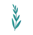leaf branch in turquoise vector image vector image