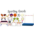 Set of many sport equipments vector image vector image