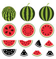 watermelon icons set vector image vector image