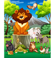 Wild animals together in the field vector image vector image