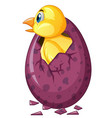 bird comes out of purple egg vector image vector image