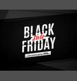 black friday sale banner poster logo on vector image
