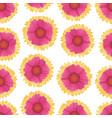 floral seamless pattern with gaillardia vector image vector image