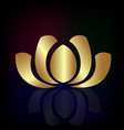 gold lotus plant against black background vector image